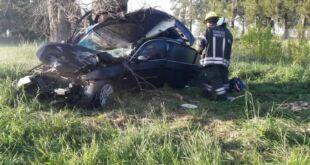 Impactante accidente fatal en la Ruta 41 provocado por un ternero suelto
